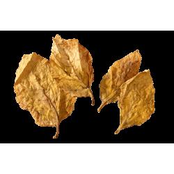 Tabacco Orientale in Foglia - 1 Kg
