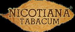 Infotec di Rondoni Emanuele|380.2303775 |Online Tobacco Shop